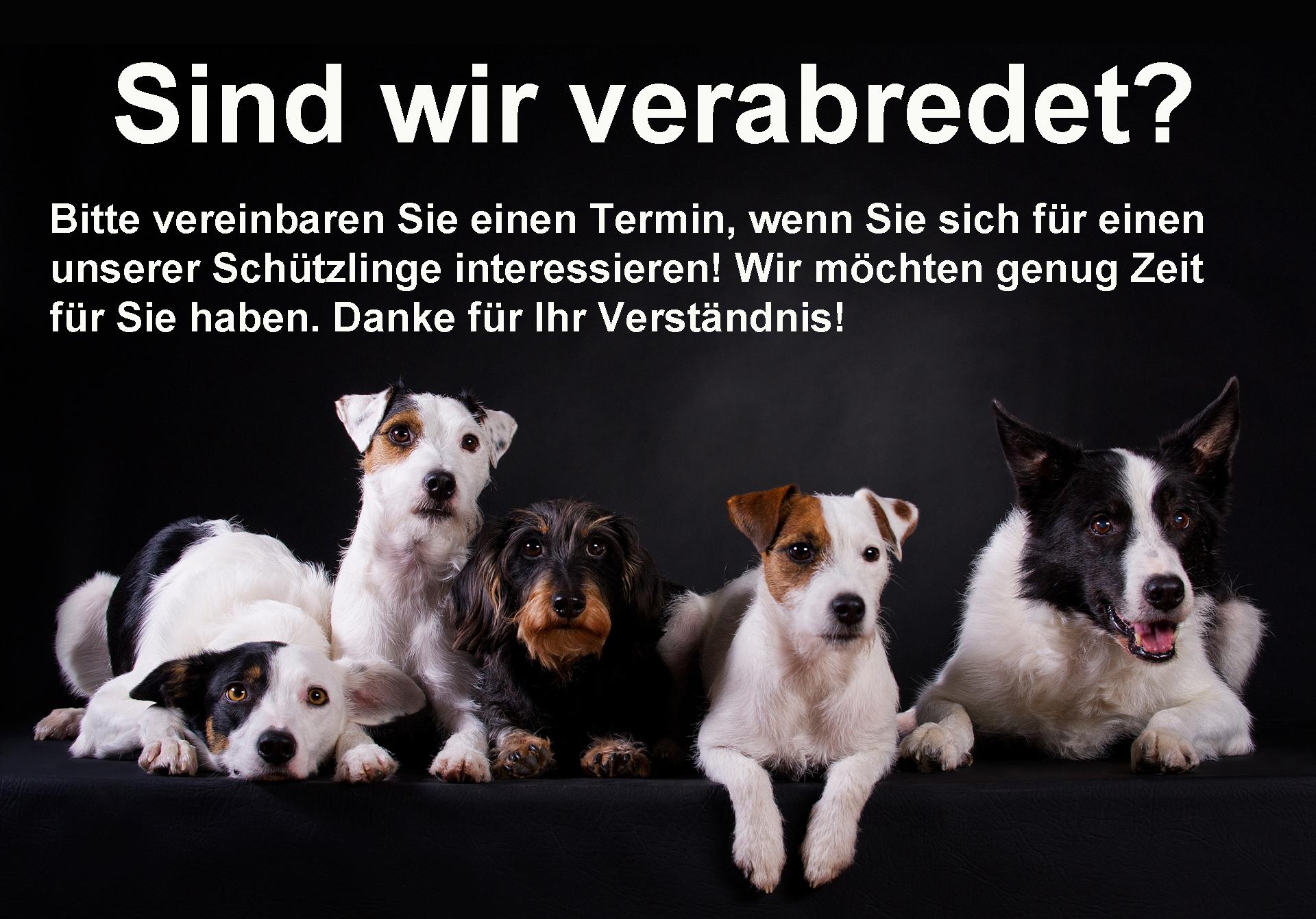 Sind-wir-verabredet-Poster2