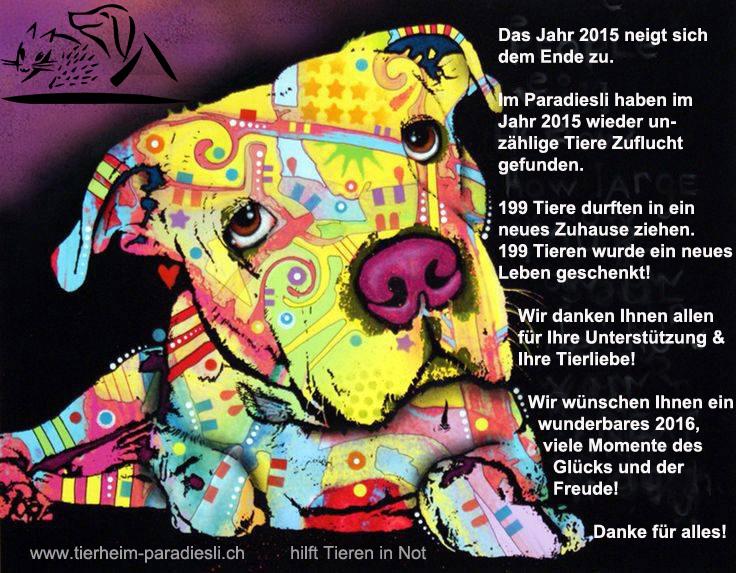 Tierheim Jahreswechsel 2016