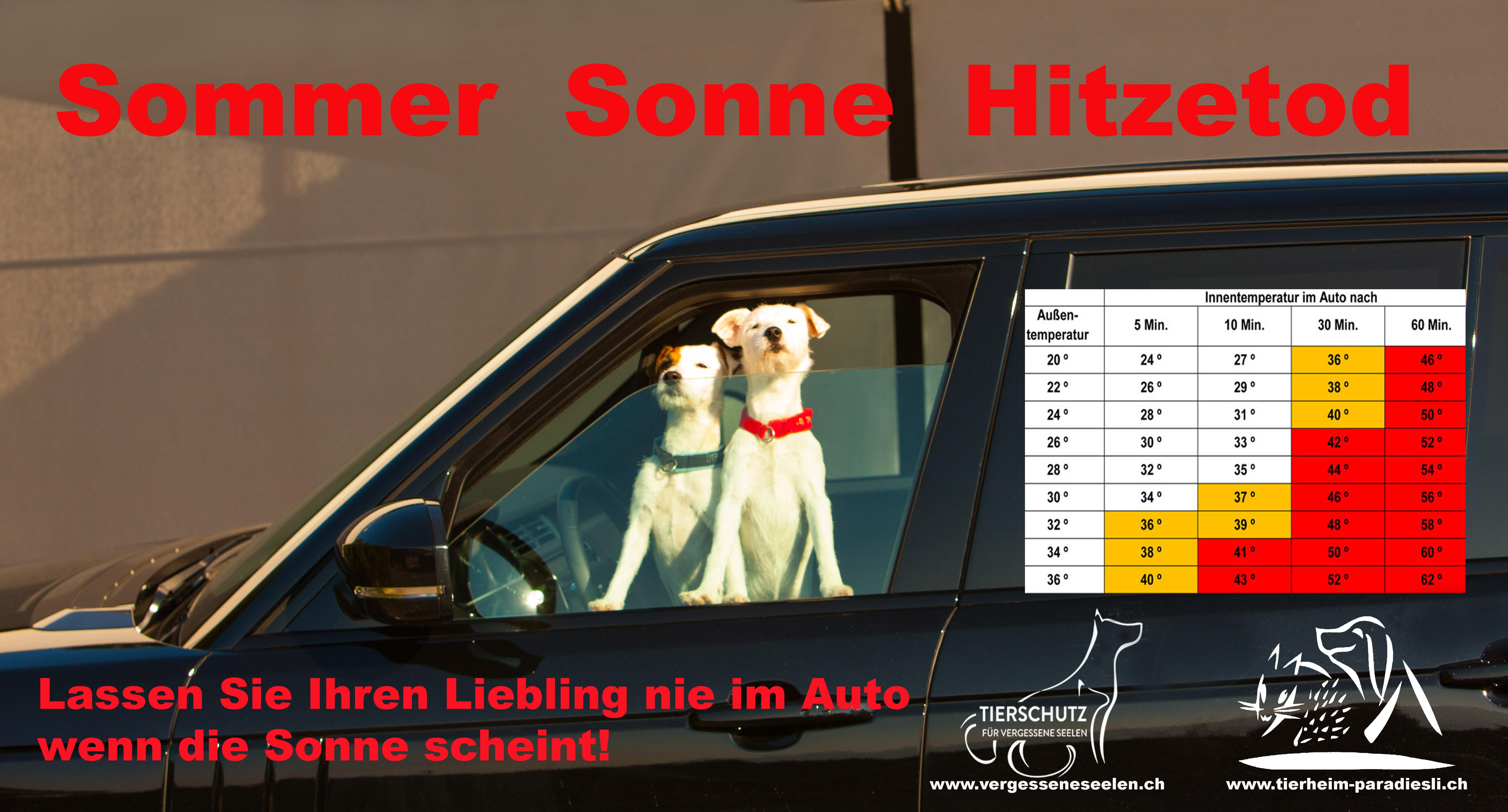 Poster Sonne Sommer Hitzetod