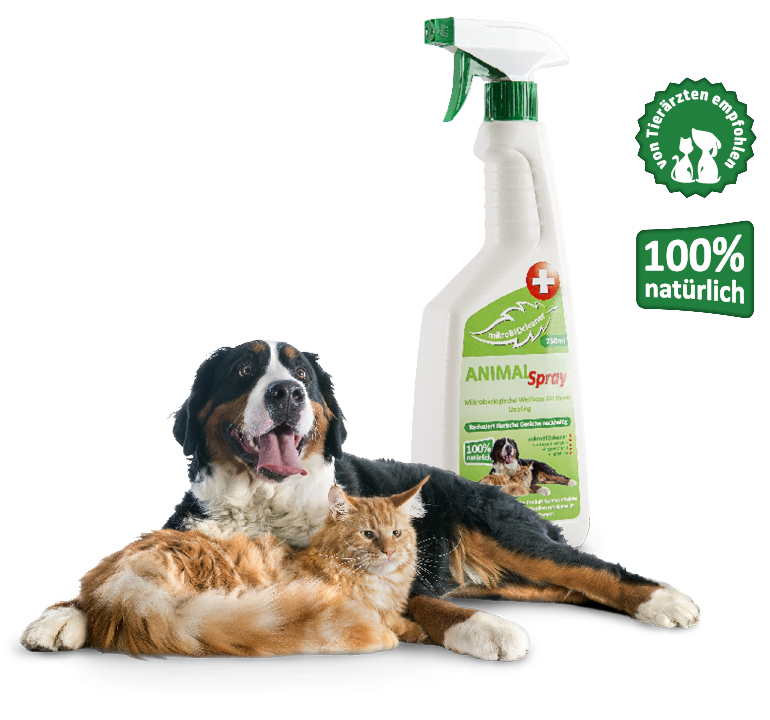 Hund-Katze-Animal-Spray