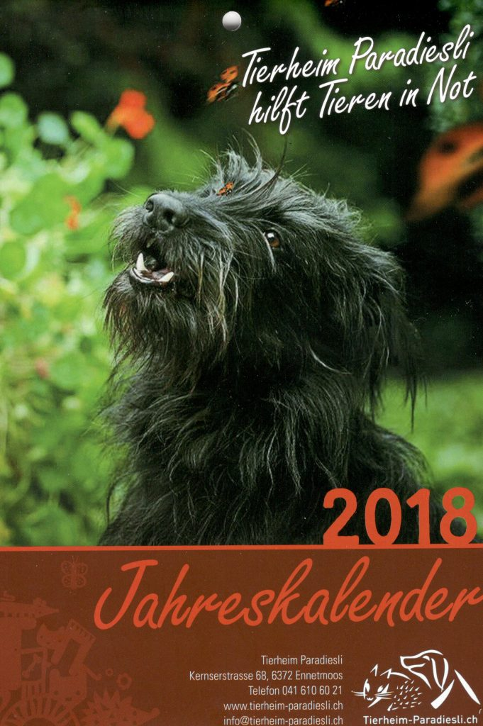 Jahreskalender Tierheim Paradiesli 2018