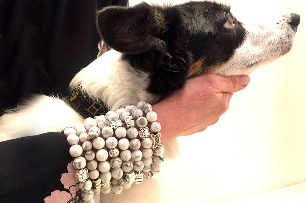 Armbänder für Tiere in Not
